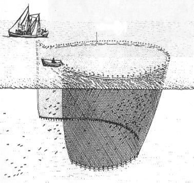 Rete da circuizione marepesca - Rete da pesca per decorazioni ...